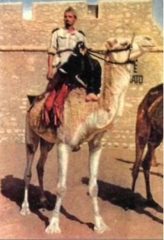 Italian officer of Meharisti on his dromedary. In this case he wears a regular uniform, but very often officers used to wear the same desert-fit dress of their men, in a perfect Tuareg-like style.