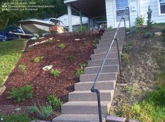 Take a look at this significant graphics in order to take a look at the shown information on Landscaping Mulch Landscaping On A Hill, Mulch Landscaping, Landscaping Ideas, Backyard Ideas, Mailbox Landscaping, Sloped Yard, Lawn Sprinklers, Garden Shrubs, Hillside Garden