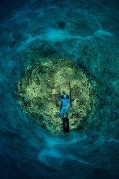 Freediving Spearfishing