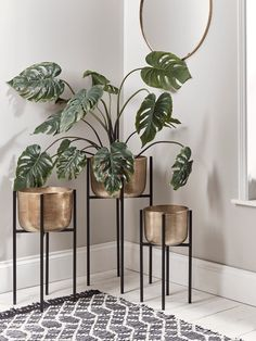 is a smart discovery platform for your home. Browse thousands of products including the Three Standing Brass Planters. Decor, Home Living Room, Living Room Decor Apartment, Plant Decor Indoor, Home Decor, House Interior, Home Interior Design, House Interior Decor, Living Room Plants