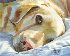 Golden Retriever by Ron Krajewski Self-taught artist Ron Krajewski (Dog Art Studio) shares his technique for painting pet portraits with wat. Painting & Drawing, Watercolor Paintings, Original Paintings, Watercolor Paper, Watercolor Techniques, Acrylic Paintings, Golden Retriever Kunst, Watercolor Animals, Dog Portraits