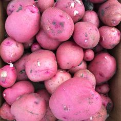 Nothing better then the garden potato! Harvest, Potatoes, Vegetables, Garden, Food, Garten, Meal, Potato, Gardening