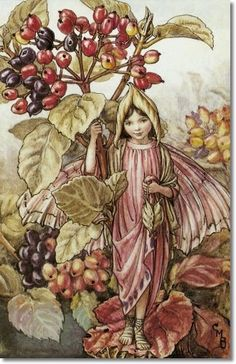 Cicely Mary Barker - Flower Fairies of the Autumn - The Wayfaring Tree Fairy Archival Fine Art Paper Print