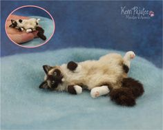 Realistic Miniature Sleeping Cat Sculpture by Pajutee on DeviantArt