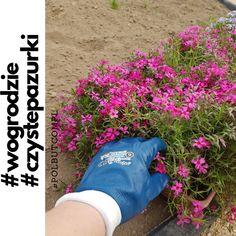 331ffe52 Prace ogrodowe czas zacząć. Rękawice #Blutrix zabezpieczą pazurki 💅 przed  uszkodzeniem i zabrudzeniem.