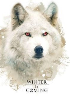 Game of Thrones,  Winter is coming