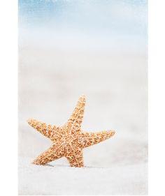 Lovely little starfish.