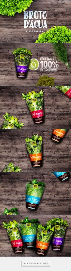 Broto Dágua Hidropônicos, water sprout hidroponics by Triocom. Source: Behance. Pin curated by #SFields99 #packaging #design