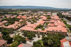 Jaki+jest+i+jak+wygląda+Uniwersytet+Stanford?