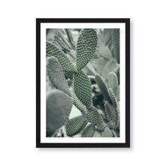 "Botanik Artprint ""Kakteen"""