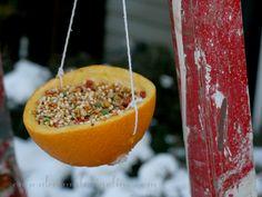 Bird Feeders and Bird Treats to Make with the Kids - Cupcakes & Crinoline | Cupcakes & Crinoline