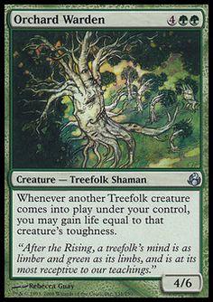 Orchard Warden - Creature - Treefolk Shaman - Tree - Green - Morningtide - Magic The Gathering Trading Card