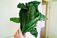 50 idées pour utiliser le kale (chou frisé non pommé)