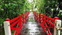 Unsere Vietnam Rundreisen führen Sie garantiert an die interessantesten Orte von Vietnam.  Je nach Ihrer verfügbaren Zeit bieten wir vordefinierte Rundreisen für eine, zwei oder drei Wochen an. Laos, Garden Bridge, Outdoor Structures, Photography, Travel, Fun Places To Go, Cambodia, Photograph, Viajes
