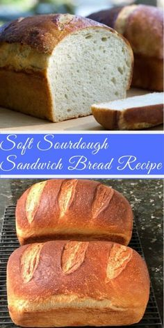 Bake this beautiful soft white sourdough Sandwich bread recipe for your favorite squishable sandwiches. Bake this beautiful soft white sourdough Sandwich bread recipe for your favorite squishable sandwiches. Sourdough Bread Machine, Sourdough Sandwich Bread Recipe, Sourdough Bread Starter, Sandwich Bread Recipes, Homemade Sandwich Bread, Wild Yeast Bread Recipe, Wonder Bread Recipe, One Loaf Bread Recipe, Overnight Sourdough Bread Recipe