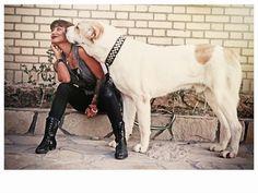 alabai Alabai Dog, Huge Dogs, Dog Best Friend, Large Dog Breeds, Cane Corso, Shepherd Dog, Rottweiler, Doggies, Dog Lovers