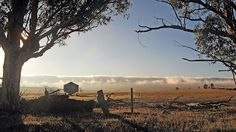 The cool morning creates a breaking surf cloud over the Tothill Range, Southern Guidebook map 5.5