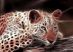 animal fractals | animal-fractal-wallpaper-tiger