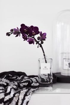 Pretty fake flowers in an elegant but inexpensive clear glass vase to add a pop of color