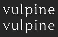 Village: Domaine Sans Display Font ideas