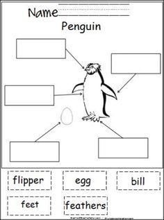 Free cut and paste activity for labeling penguin parts.  This is a terrific winter activity for young students and great addition to any penguin unit.