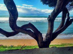via http://ift.tt/1SUxv2J by SARDEGNA SHOP:  amzn.to/1Oi0lae Libri | amzn.to/1OqMw71 Musica | amzn.to/1OqMOLo Artigianato sardo | amzn.to/1OqMXyo Gioielli sardi | amzn.to/1P0SFwh Fotografia in Sardegna #goodmorning#domenichealternative#spiaggia#beach#sarchittu#italy#sardinia#three#blue#sea#beautiful#picoftheday#picoftheweek#instagram by matteo297