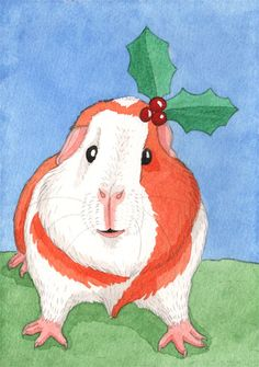 A festive guinea-pig to brighten your day!  Merry Christmas everyone!