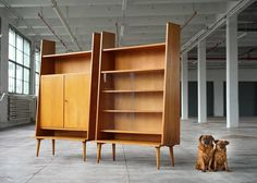 Bookcases by Helmut Magg 10