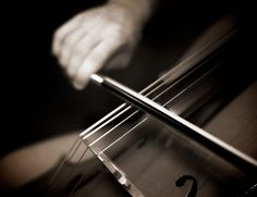 oh if i could learn another instrament, the cello is so amazingly beautiful