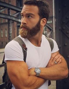 Proper Trimmed Beard