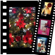 A #Natale regala o regalati un profumo di #LineaEmmezeta. Entra nel ns. sito on-line e scopri tutte la fragranze disponibili. www.lineaemmezeta.com. Spedizione gratuita oltre la spesa di € 24,00.