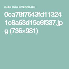 0ca78f7643fd113241c8a63d15c6f337.jpg (736×981)