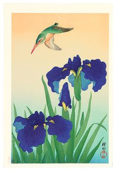 Ohara Koson: Iris and Kingfisher - Ca. early 20th century.