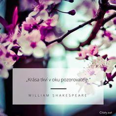 Krása tkví v oku pozorovatele. William Shakespeare, Quotes, Inspiration, Books, Quotations, Biblical Inspiration, Libros, Book, Book Illustrations
