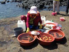 Haenyo: Diving for Sea Creatures on Jeju Island