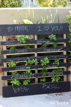 Grow herbs in palette on side to utilize small space in tiny yard