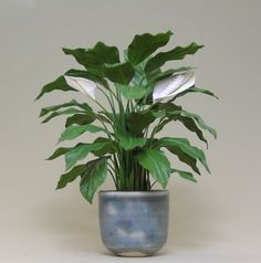 Dollhouse Miniature Peace Lily by Carolyn Mohler Kraft IGMA Fellow 2015 in pottery by Jane Graber