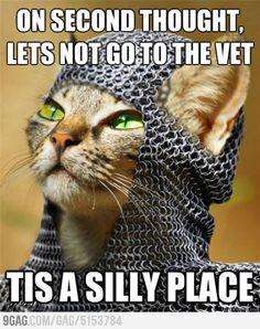 Kitty Python