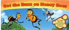 honey bee lesson plan