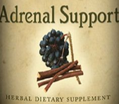 ADRENAL SUPPORT Liquid Tincture Traditional Blend with Ginger & Holy Basil