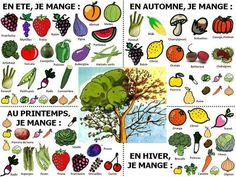 Les fruits et les légumes selon les saisons French Teaching Resources, Teaching French, Food Vocabulary, Core French, Ap French, French Classroom, Eat Seasonal, French Teacher, French Lessons