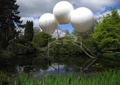 Bridge Suspended by Giant Balloons // Japanese Garden, Tatton Park, Chesire East, England