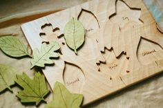 i want this so badly for my son, who loves playing with leaves and plants!