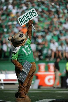 Go Rider, Saskatchewan Roughriders, Canadian Football, Love My Family, Savannah Chat, Pride, Sports, Green, Fan