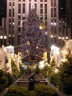 My favorite Christmas tree in the world! (The Christmas Tree at Rockefeller Center by Jackie) Christmas Tree Images, New York Christmas, Beautiful Christmas Trees, Christmas Lights, Christmas Time, Merry Christmas, Christmas Spectacular, Magical Christmas, Xmas Tree