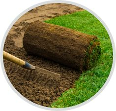 Rollrasen und Fertigrasen verlegen Lawn And Garden