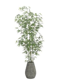 Bamboo (GFP38): Bamboo, Green, Stack Vase, 32wx31dx81h