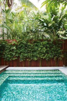 Inspired by a family trip to Bali, this compact garden includes kid-friendly zones and plenty of space for entertaining. Backyard Pool Landscaping, Small Backyard Pools, Small Pools, Tropical Landscaping, Outdoor Pool, Landscaping Ideas, Backyard Ideas, Pool Fence, Natural Landscaping