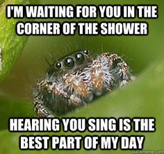 I'm waiting for you in the corner of the shower hearing you sing is the best part of my day  Misunderstood Spider funny meme