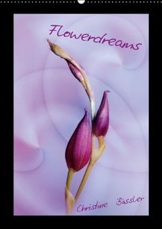 Flowerdreams/UK-Version (Wall Calendar 2014 DIN A2 Portrait): Blossoms in pink and violett (Month Calendar, 14 pages) von Christine Bässler http://www.amazon.de/dp/3660368776/ref=cm_sw_r_pi_dp_LVAmub0YR1N6X
